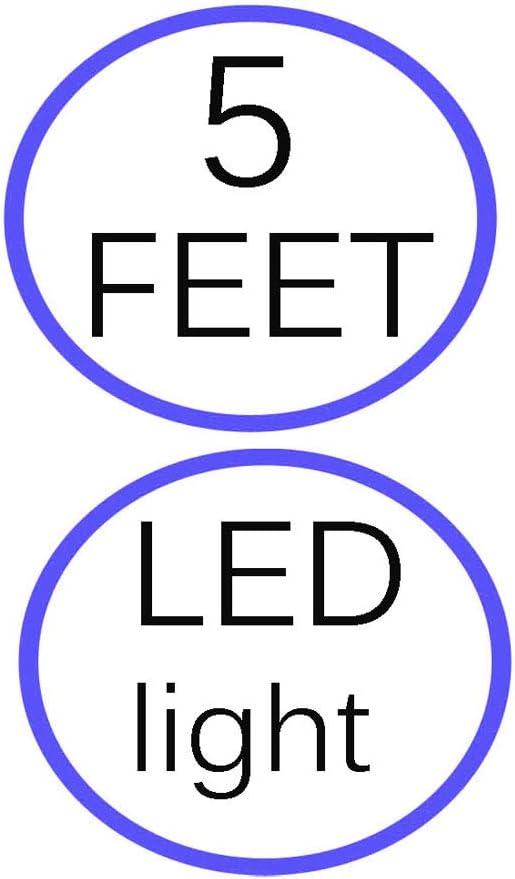 with LED Indicator 5 Feet EPowerExpert AC DC Adapter for Digital Spectrum MemoryVUE MV-1900 Plus 19 Digital Photo Frame