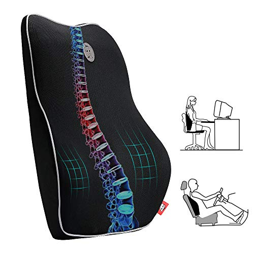 Memory Foam Lumbar Support Pillow, Gugusure Breathable Mesh Back Cushion with Ergonomic Designed for low Back Pain Relief, Orthopedic Backrest for Car Seat, Office Chair, Wheelchair and Recliner ()