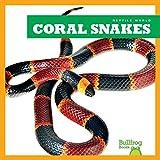 Coral Snakes (Bullfrog Books: Reptile World)