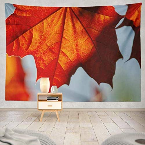 Deronge Tapestry Wall Hanging Red Maple Swamp Water Soft and Trees North Tapestry Wall Art Decor 60x80 Inch Wall Tapestry for Men Bedroom Home Decor Decorative Tapestry Dorm