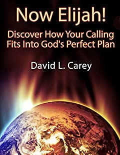 Now Elijah! - Discover How Your Calling Fits Into God's Perfect Plan
