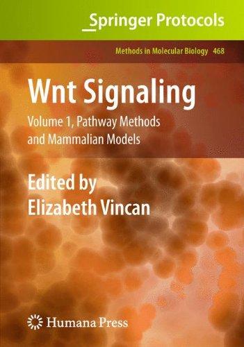Wnt Signaling: Volume 1: Pathway Methods and Mammalian Models (Methods in Molecular Biology)