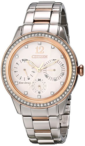 Citizen Women's Eco-Drive Crystal Accent Watch with Day/Date, (Two Tone Chronograph Silver Dial)