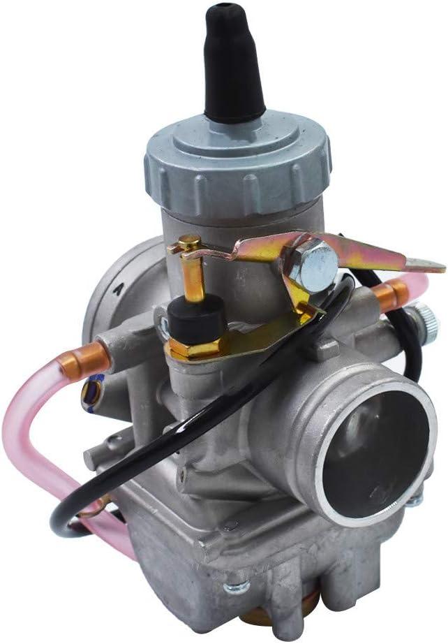 labwork Carburetor Fit for 28mm Carb VM28-49 1002-0052 13-5007
