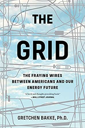 Image result for the grid fraying wires book