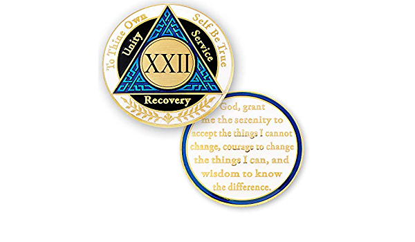 12 Step Token 22 Year AA Coin Silver Color Plated Medallion Alcoholics anonymous coin Recovery Chip