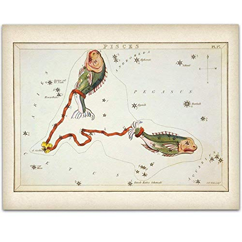 - Pisces Zodiac Antique Constellation Art Print - 11x14 Unframed Art Print - Great Home Decor or Gift Under $15 to Astrology Enthusiasts