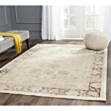 Safavieh VTG117-440-9 Vintage Collection Stone Area Rug, 8-Feet 10-Inch by 12-Feet 2-Inch