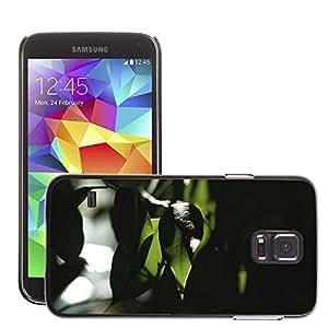 Super Stellar Slim PC Hard Case Cover Skin Armor Shell Protection // M00052734 trees lights aero macro leaves // Samsung Galaxy S5 i9600