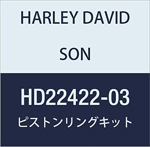 ハーレーダビッドソン(HARLEY DAVIDSON) PISTON & RING KIT.005 OS HD22422-03 HD22422-03  B01M2ZXMIF