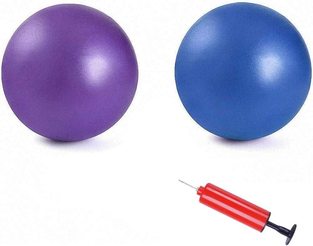 25cm Yoga Ball Anti-burst Thick Stability Ball Mini Pilates Barre Physical