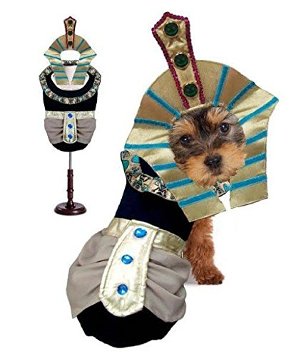 King Mutt Dog Costumes King Tut Egyptian Royalty Pharaoh Dogs Halloween Wear by Defonia Petsupplies