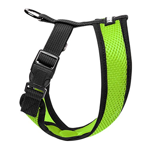Product image of Gooby Choke Free X Frame Soft Harness with Micro Suede Trimming for Small Dogs, Medium, Green