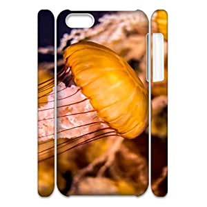 V-T-C5091082 3D Art Print Design Phone Back Case Customized Hard Shell Protection Iphone 5C