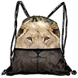 Beatybag 3D Print Drawstring Bags Bulk, African Lions Unisex Outdoor Gym Sack Bag