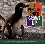 img - for A Penguin Chick Grows Up (Baby Animals (Carolrhoda Books Hardcover)) book / textbook / text book