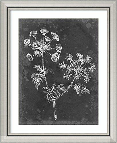 Framed Wall Art Print Slate Floral I by Ethan Harper 25.75 x 31.75