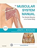 The Muscular System Manual - E-Book: The Skeletal Muscles of the Human Body