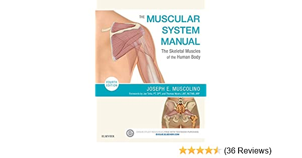 The Muscular System Manual - E-Book: The Skeletal Muscles of the ...