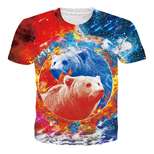 RAISEVERN Personalized Galaxy Ice-Fire Polar Bear 3D Digital Printed Cool T-Shirt Stylish Crew-Neck Short Sleeve for Men Women ()