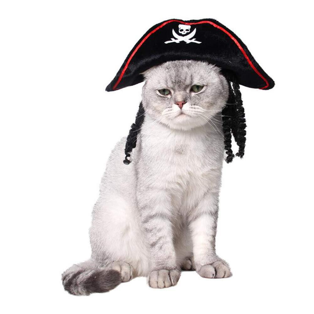 Mascota Gato Cachorro Miedo Halloween Navidad Pirata Sombrero Moda