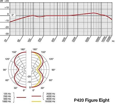 Amazon.com: AKG P420 High-Performance Dual-Capsule True Condenser ...