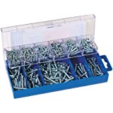 Draper 61275 - Caja de tornillos autorroscantes (305 piezas)