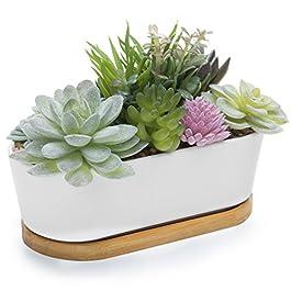 MyGift Mixed Artificial Succulent Plant Arrangement...