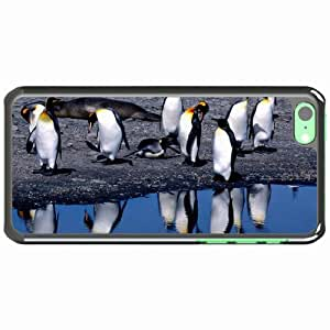 iPhone 5C Black Hardshell Case penguins summer thaw Desin Images Protector Back Cover by runtopwell