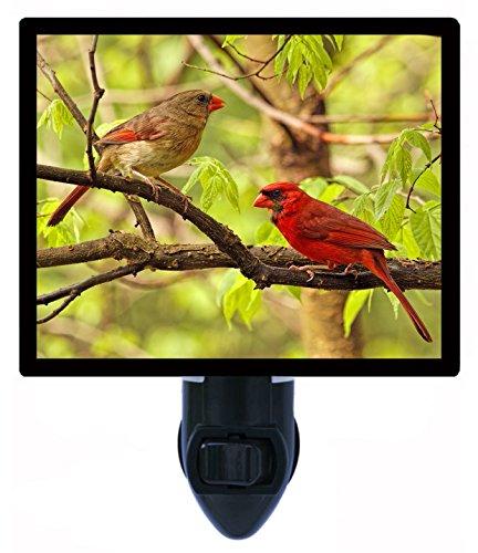 - Night Light - Two Cardinals in Tree - Red Birds LED Night Light