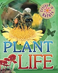 Cycles In Nature: Plant Life