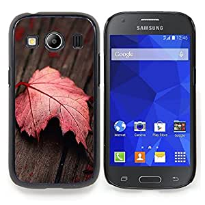 "Qstar Arte & diseño plástico duro Fundas Cover Cubre Hard Case Cover para Samsung Galaxy Ace Style LTE/ G357 (Hoja roja"")"