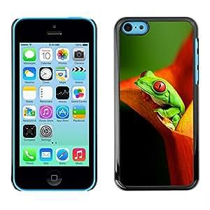 FECELL CITY // Duro Aluminio Pegatina PC Caso decorativo Funda Carcasa de Protección para Apple Iphone 5C // Flower Frog Green Orange