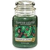 Yankee Candle Large Jar Candle, Balsam & Cedar