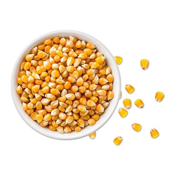 Dry Fruit Hub Popcorn Kernels 400gms Unpopped Popcorn Seeds (Popcorn Party Pack, Butter Delite Pop Corn Kernels)