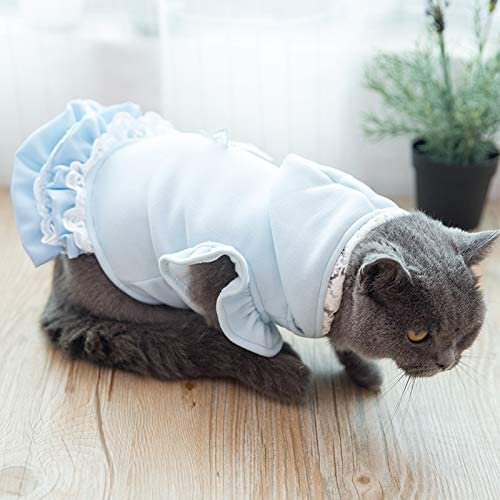 miaoxuewei Ropa para Gatos Mascotas otoño Gatos Faldas Gatos sin Pelo muñecas Garfield Gatitos Ropa de Dos Patas Perro cálido y Grueso: Amazon.es: Productos para mascotas
