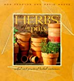 Herbs in Pots: A Practical Guide to Container Gardening Indoors and Out