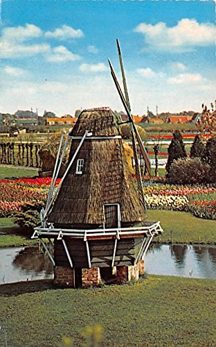 Land of Flowers and Windmills Holland Postcard ()
