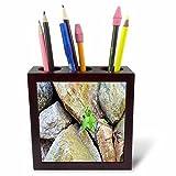 3dRose TDSwhite – Rock Photos - Rock Formation - 5 inch Tile Pen Holder (ph_281915_1)