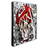 "NFL Beautiful Gallery Quality, High Resolution Canvas, 16"" x 20"""