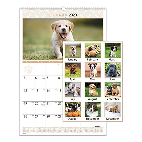 AT-A-GLANCE 2020 Monthly Wall Calendar, 15-1/2 x 22-3/4, Large, Puppies (DMW16728)