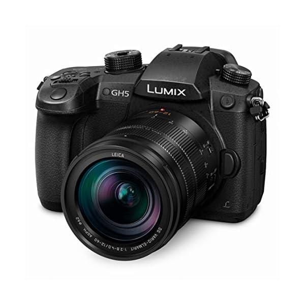 RetinaPix Panasonic LUMIX GH5 4K Mirrorless Camera with Lecia Vario-Elmarit 12-60mm F2.8-4.0 Lens