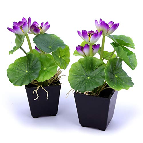 - MaxFlowery Set of 2, Artificial Real Touch Lotus Plant with Violet Blooms in Matt Black Pot, Duo Faux Potted Plants Greenery & Flowers with Square Planter