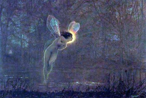 Art Oyster John Atkinson Grimshaw Iris - 18.1