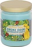 Smoke Odor Exterminator 13oz Jar Candle, Sparkling Juniper, 13 oz