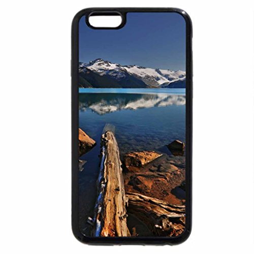 iPhone 6S / iPhone 6 Case (Black) Decay Rate