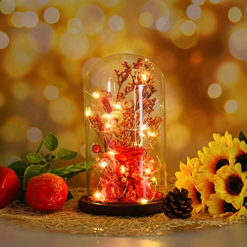 Glass Thanksgiving (Iusun LED Glass Cover Immortal Flowers Micro Landscape for Valentine's Day Christmas Thanksgiving Day - Shiping From USA (warm yellow))