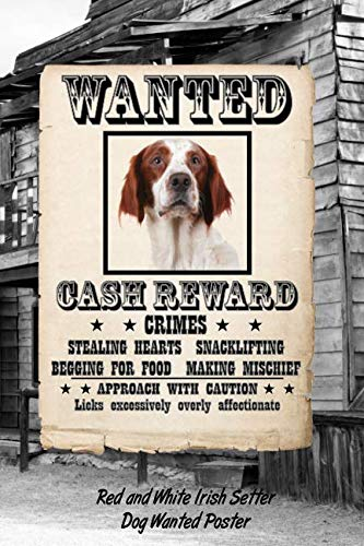 Red and White Irish Setter Dog Wanted Poster: Beer Tasting Journal Rate and Record Your Favorite Beers Collect Beer Name, Brewer, Origin, Date, ... meter, Note and Flavor wheel 120 ()