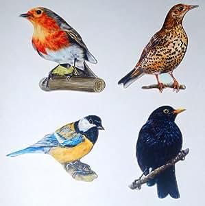 Garden Birds Wooden Fridge Magnet Gift Set - BD-1