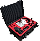 Professional Carrying Case for DJI Goggles